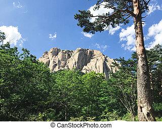 Beautiful mountain landscape in Seoraksan National Park, South Korea