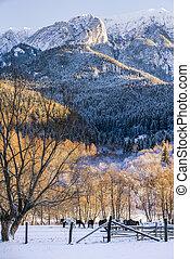 Beautiful mountain landscape in winter