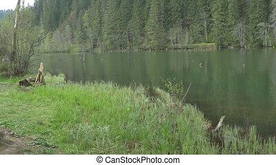 Beautiful Mountain Pond