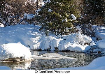 Beautiful mountain stream in winter include snow