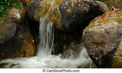 Beautiful mountain whitewater brook. Small waterfalls and...