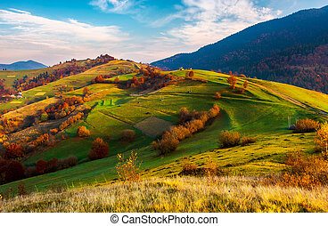 beautiful mountainous countryside in autumn. vivid fall...
