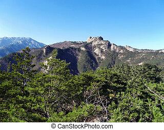 Beautiful mountains Seoraksan and coniferous forest. South Korea