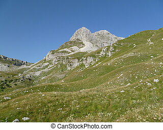 beautiful mountains with grass and rocks