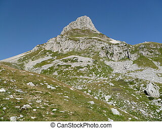 mountains with grass and rocks