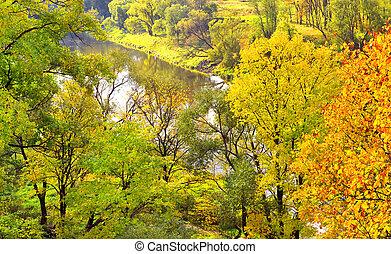 Beautiful multi-coloured autumn panorama