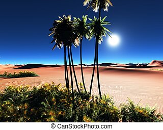 African oasis - Beautiful natural background -African oasis
