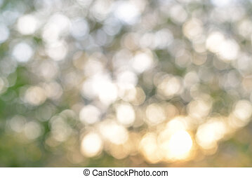 Beautiful natural bokeh. Green abstract blur nature bokeh background in light colors