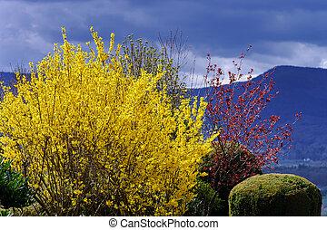 Beautiful natural colors of dunny springtime