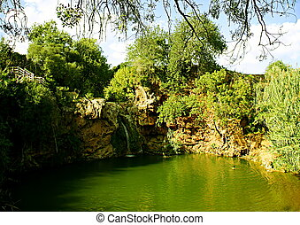 Beautiful natural green lake in Portugal, Algarve region, with a solo swimmer, on a sunny day