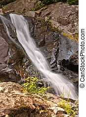 beautiful natural waterfall in National Park