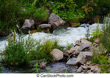 Beautiful nature Altaya