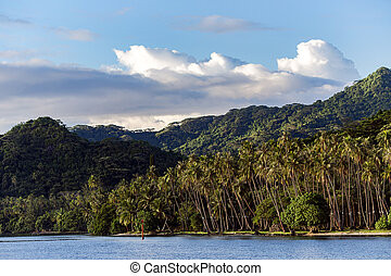 Beautiful nature of the islands of French Polynesia