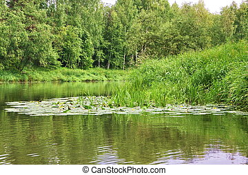 beautiful nature on the river Chusovaya in the Perm region, ...