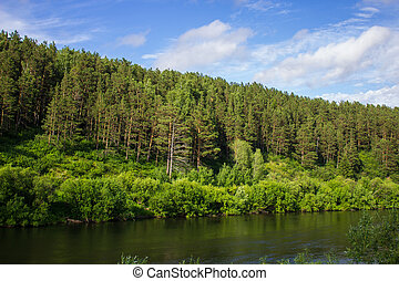 Beautiful nature, river, green forest and blue sky