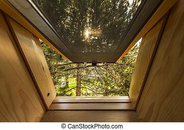 Beautiful nature view through roof skylight