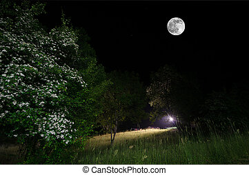 Beautiful night landscape of big full moon rising over the mountain road with hill and trees, mystical concept
