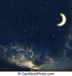 Beautiful night sky with a lot of stars