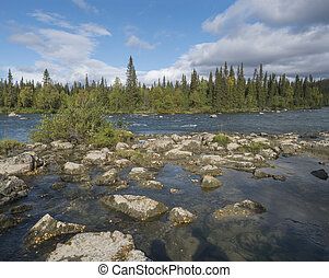 Beautiful northern landscape with azure blue river Kamajokk, mountains, boulders and spruce tree forest in Kvikkjokk in Swedish Lapland. Summer sunny day, white clouds.