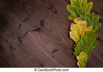 Beautiful oak leaves on wooden background. Leaves on the right as the frame