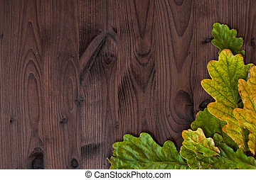 Beautiful oak leaves on wooden background. Lot of leaves on the right as the frame