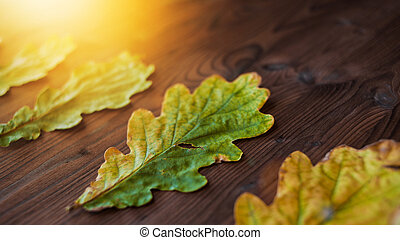 Beautiful oak leaves on wooden background. Side view. Lens flare effect