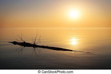 Beautiful ocean and snag. Sunrise in the sea