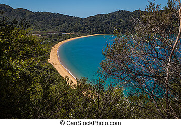 Beautiful ocean bay with golden sandy beach, in Abel Tasman National Park, New Zealand South Island