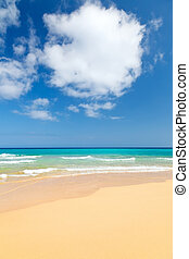 Beautiful ocean beach on Canary islands