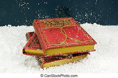 beautiful old books in the snow