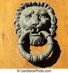 beautiful old door knocker