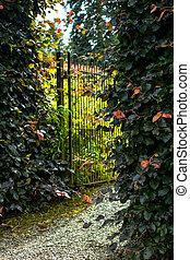 Beautiful old garden gate with hedges
