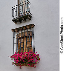 Beautiful Old Window in a White Wall Decorated with Red Flowers Caribbean Flavor Santo Domingo