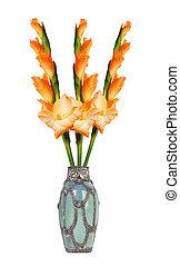 Beautiful orange gladiolus in vase isolated on white background