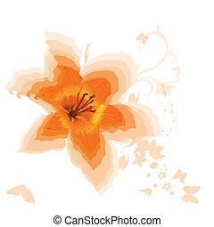 Beautiful orange lily. Vector.