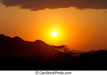 sunset in Africa with shades of baobab trees