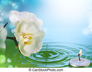Beautiful Orchid And Candle In Water