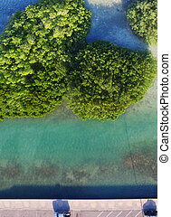 Beautiful overhead view of mangroves in the ocean