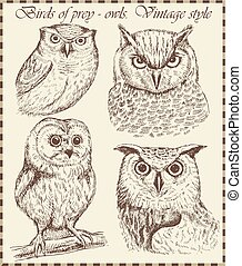 Beautiful owl in vintage style drawn by hand. Set of hand-drawn bird illustrations