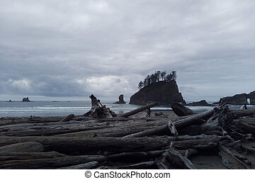 Beautiful Pacific Coast in the Olympic National Park.