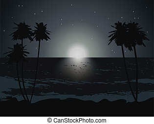 beautiful palm on the beach