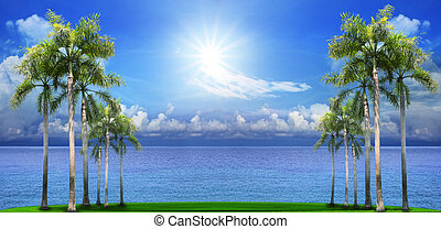 beautiful palm tree on green field with blue sea water background use as natural scene
