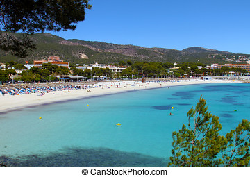 beautiful palma nova beach in mallorca balearic islands