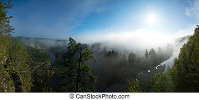 beautiful panorama of a sunny morning in the national park of deer streams