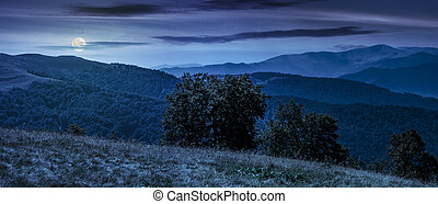 beautiful panorama of Carpathians at night - beautiful...