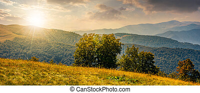 beautiful panorama of Carpathians at sunset - beautiful...