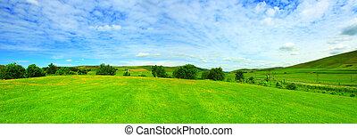 Beautiful panorama of summer landscape
