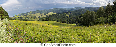 Beautiful panorama of the summer landscape in Altai Mountains