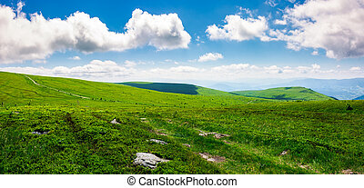 beautiful panoramic mountainous landscape. lovely summer...