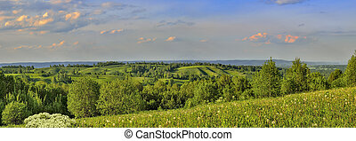 Beautiful panoramic summer landscape